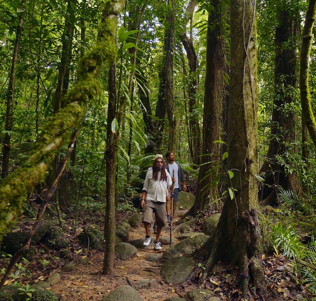 Indigenous-Guided-Bushwalk